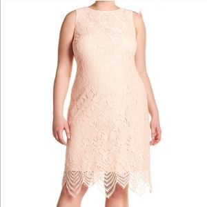 Sharagano Scallop Lace Tank Pink Dress Sleeveless
